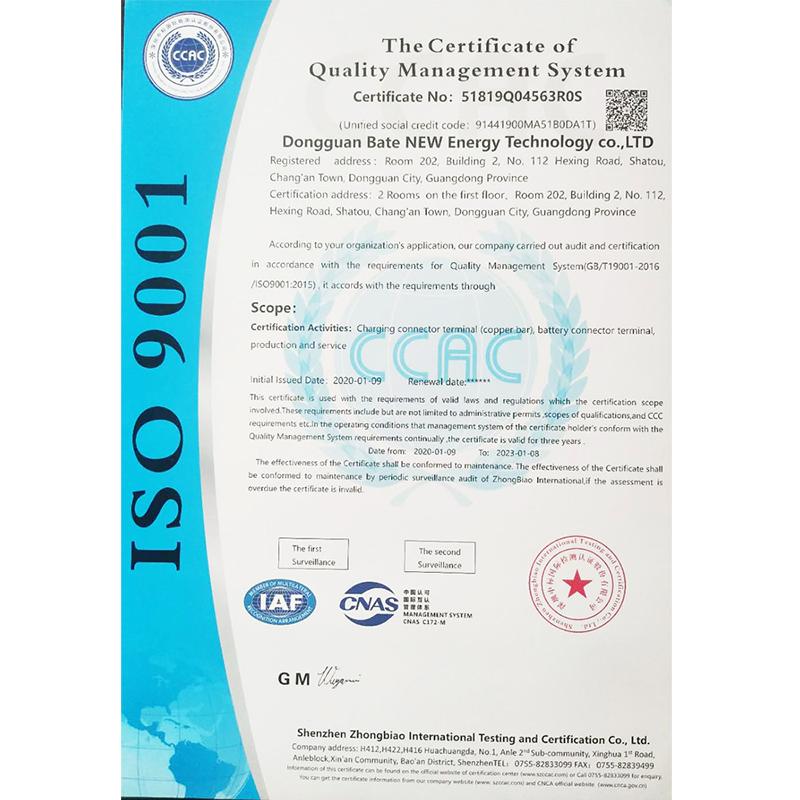 Het certificaat van kwaliteitsmanagementsysteem